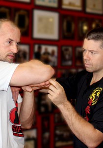 private-wing-chun-lessons-private-lessons-lakeland-florida-fl