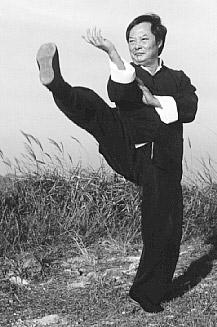 wong-shun-leung-fighter-wing-chun