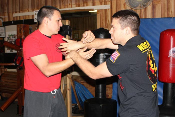 International Wing Chun Day 2013