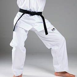Fighting Stances Across Martial Arts Sifu Och Wing Chun