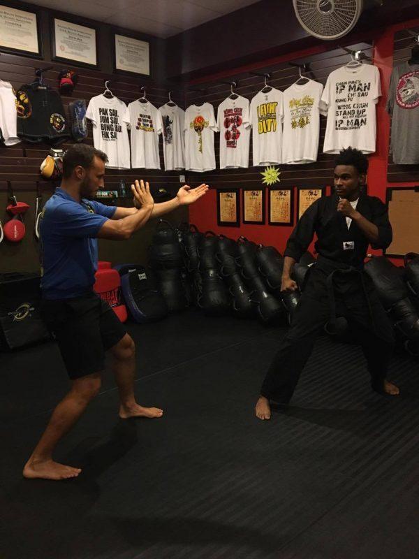 Wing Chun Vs. Tae Kwon Do